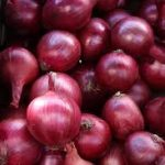 Magnate F1 Onion Seed